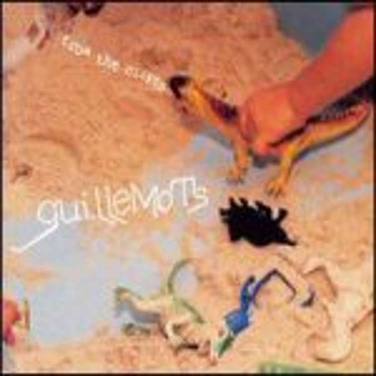 Guillemots - from the cliffs