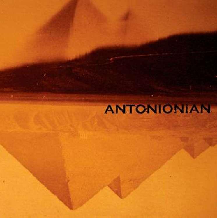 ANTONIONIAN: into the night