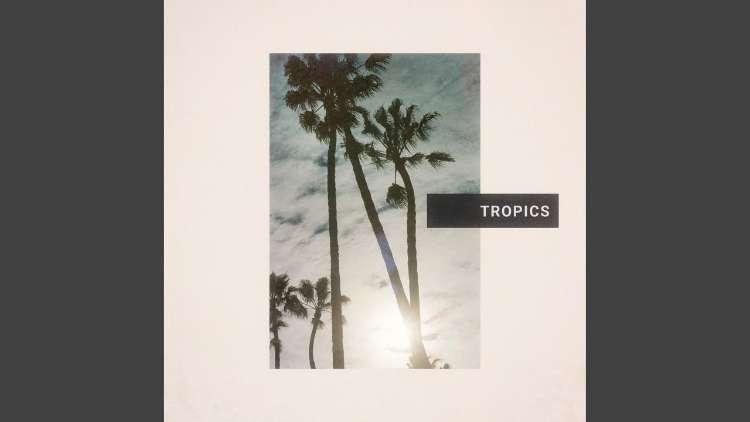 Past Palms - Tropics
