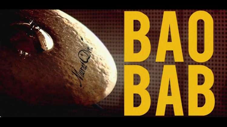 Bakos - The Last Baobab