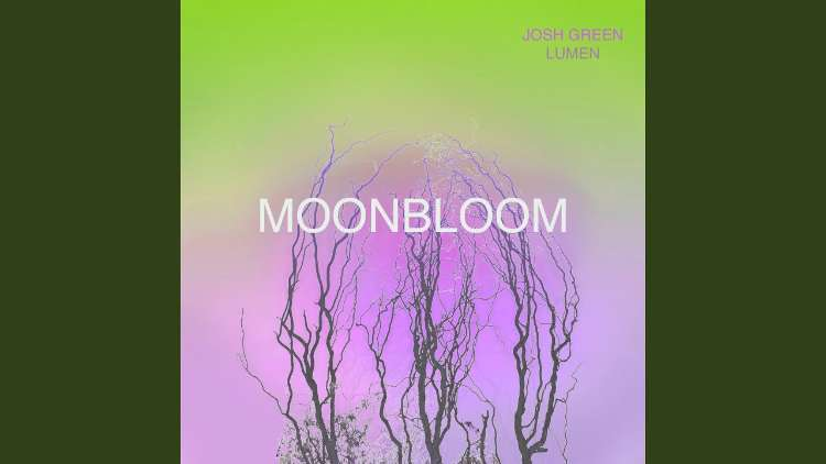 Josh Green - MoonBloom