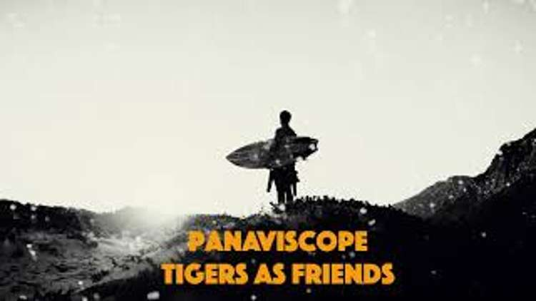 Panaviscope – Tigers as Friends