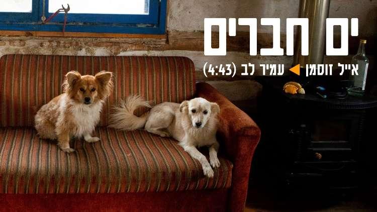 Eyal Zusman & Amir Lev - Ocean of Friends