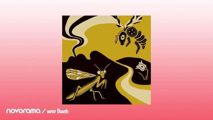 Coy Haste - Honeybee